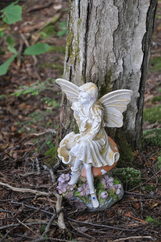 pictures of real life fairies