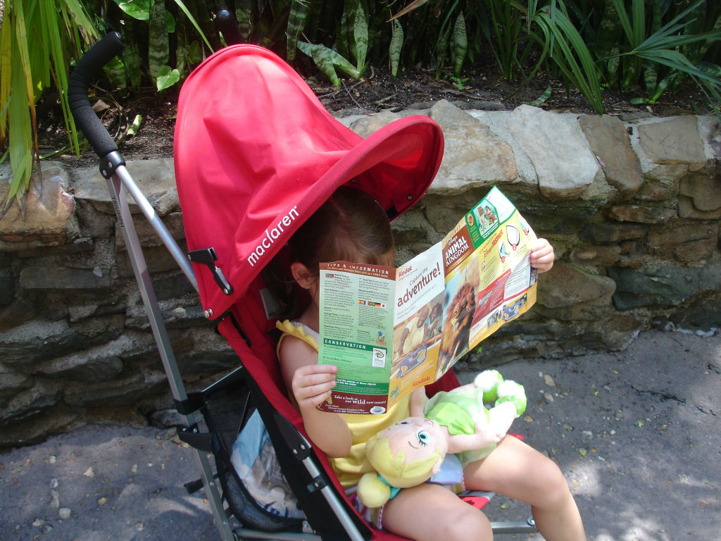 Navigating around Animal Kingdom - throwback thursday