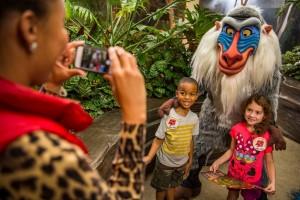 Lion Guard Adventure at Disney's Animal Kingdom