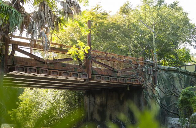 Pandora Disney's Animal Kingdom Bridge