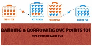banking & borrowing dvc points
