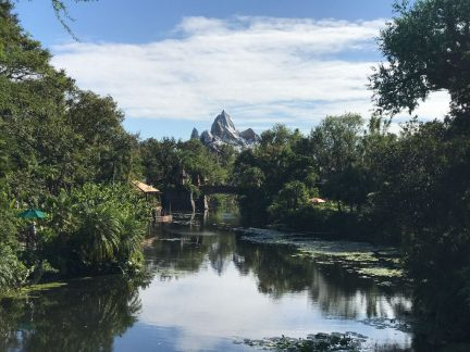 Expedition Everest Animal Kingdom Wordless Wednesday