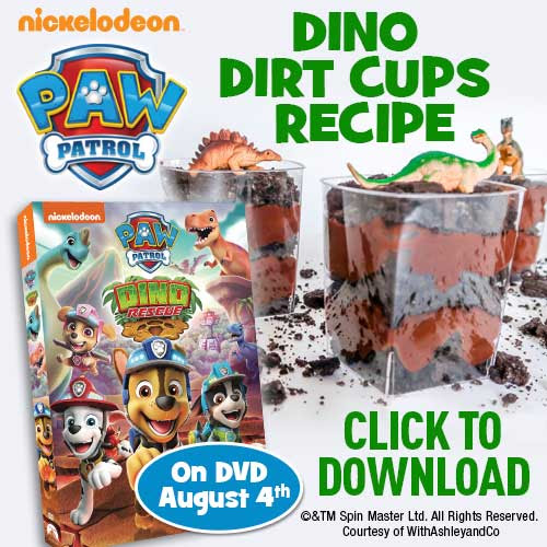 paw patrol Dino Rescue dirt cups